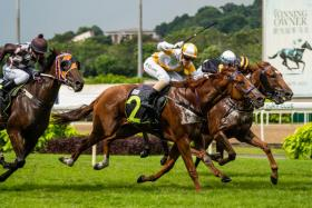 Acrobat (No. 2) giving top South Australian apprentice Raquel Clark a nice send off at Kranji on Saturday.