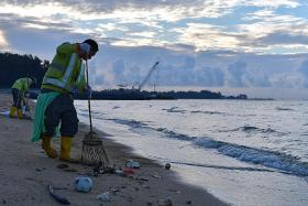 They work to keep our beaches clean