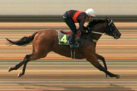 Made In Russia cleared away under hands and heels riding to win by five lengths in Trial 3.