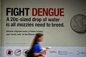 Four more dengue deaths, bringing total to nine this year