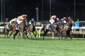 The unbeaten Surpass Natural (No. 8) is heading for better things and is the top bet at Kranji tonight.