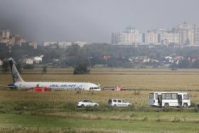 Russian pilot saves over 230 lives landing jet in corn field