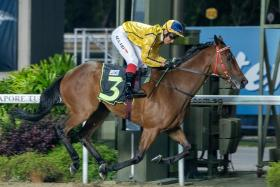 Coming Through winning first-up on Friday night to give trainer Desmond Koh the first leg of his double.