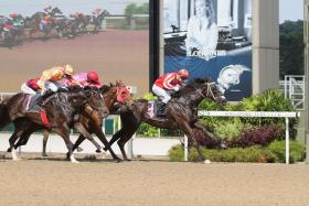 Champion jockey Vlad Duric squeezing every drop from Nova Vocal (No. 4) for a hard-earned 11/4-length victory in Class 3 at Kranji on Sunday.