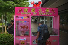 Restaurant slammed for letting patrons catch crabs with claw machines
