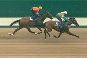 Augustano had an easier time at the trials on Tuesday morning by clocking 60.23sec in Trial 3.