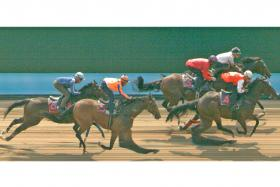 Safeer beating Implement, Nepean, Distinctive Darci and Circuit Mission in Tuesday's Kranji Trial 3.