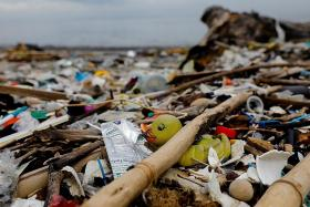 South-east Asian countries need tougher plastic policies: UN report