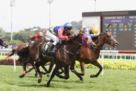 Whistle Grand (with M Rood astride in blue cap) winning in Race 4.