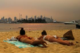 Sydney haze 11 times worse than 'hazardous' levels