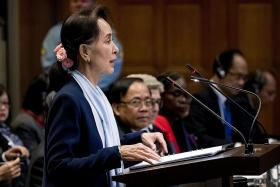 Suu Kyi rejects claims of genocide