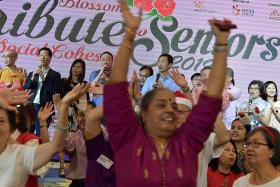 Blossom Seeds charity raises more than $300,000 to renovate centre