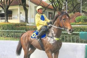 Apprentice jockey Iskandar Rosman on Tuesday's trial winner Excelling.