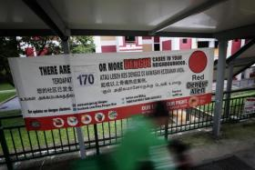 Dengue spike this year if mosquito growth unthwarted