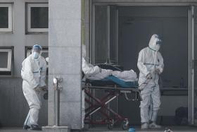 China says 17 more infected with new coronavirus strain