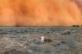After fire, dust and hail play havoc on Australian summer