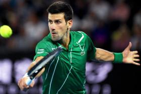 Novak Djokovic will next face Roger Federer in the Australian Open semi-finals on Thursday (Jan 30).
