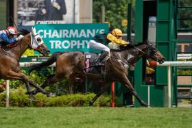 Lion City Cup in Fame Star's sights