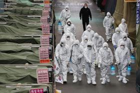 South Korea at highest alert level as infections soar