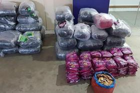 HSA seizes record haul of chewing tobacco worth $200,000 in Woodlands
