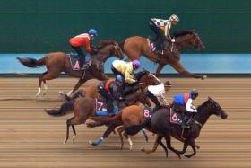 Elite Conquest (No. 6) victorious in a blanket finish in yesterday's Trial 3.