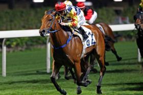 Champion jockey Zac Purton winning on Amazing Star - his second winner at Happy Valley on Wednesday night.