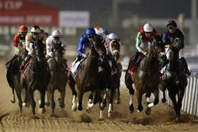 The action at last year's Dubai World Cup race at Meydan Racecourse.