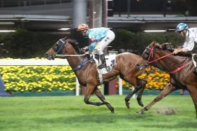 The Caspar Fownes-trained Dances With Dragon capping Zac Purton's five-timer at Happy Valley on Wednesday night.