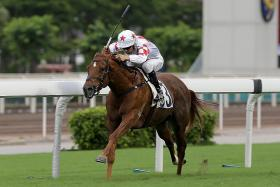 The Douglas Whyte-trained Inner Flame capping a treble for jockey Joao Moreira at Sha Tin yesterday. The Brazilian has now levelled up with arch-rival Zac Purton in the premiership table with 117 winners apiece.