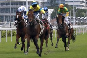 Righteous Doctrine (in yellow) winning with jockey Karis Teetan astride to give trainer Michael Chang his 15th success of the season.