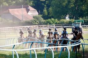 Horses preparing for racing's restart in England.