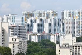 $100 utilities credit for households with at least one Singaporean