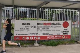 Singapore set for a historic dengue high