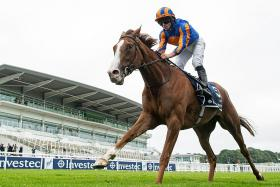 Love does the Guineas-Oaks double in style