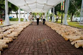 Singapore to crush nine tonnes of illegal ivory worth $18m