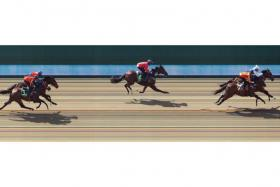 Churchill (inside) beating Threeandfourpence in Trial 2 at Kranji yesterday.