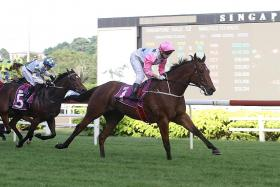 Inferno now heads for Group 1 Singapore Guineas