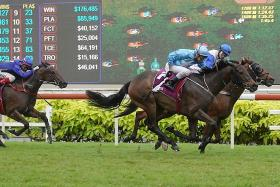 Top Knight rules the Singapore Derby