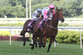 nferno winning the Group 2 Singapore Classic on Aug 30.