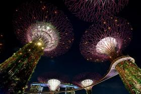 $100 tourism vouchers for personal use only: STB