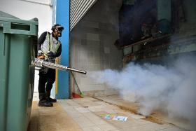 Number of dengue deaths equals Covid-19 deaths in Singapore