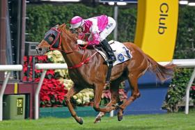 No stopping jockey Joao Moreira