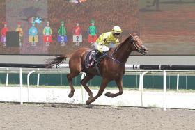Jockey Mark Ewe wins on his final ride