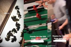 Videos of the incident show the teens unboxing the live frogs and playing foosball with a frog on the table.
