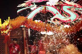 No dragon dances, fewer lion dances to welcome Year of the Ox