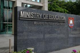 Schools can be flexible for students with gender dysphoria: Minister