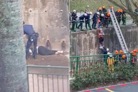 Madam Hu Hui Fang was seen lying face down in the canal. Rescuers secured her to a stretcher and lifted her with a hoisting system.