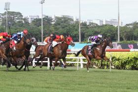Yesterday's gallops by horses engaged at Kranji on Saturday