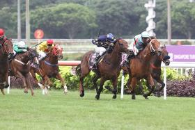 Look Meagher, Lim's Kosciuszko is a star