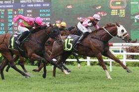 Prodigal (No. 15), the first reserve who secured a berth, responding to jockey Shafrizal Saleh's riding to take Race 2 and give champion trainer Michael Clements the second leg of his four-timer at Kranji on Saturday.
